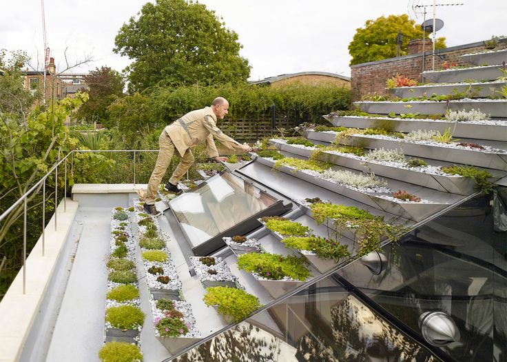 Pyramid rooftop garden creates green oasis for London home - Curbedclockmenumore-arrow : The Garden House is longlisted for RIBA's House of the Year award