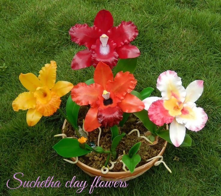 Cattleya orchid flowers... https://www.facebook.com/suchethaclay?ref=hl