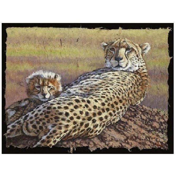 Cheetah Print | Top of the Morning | Gary Johnson