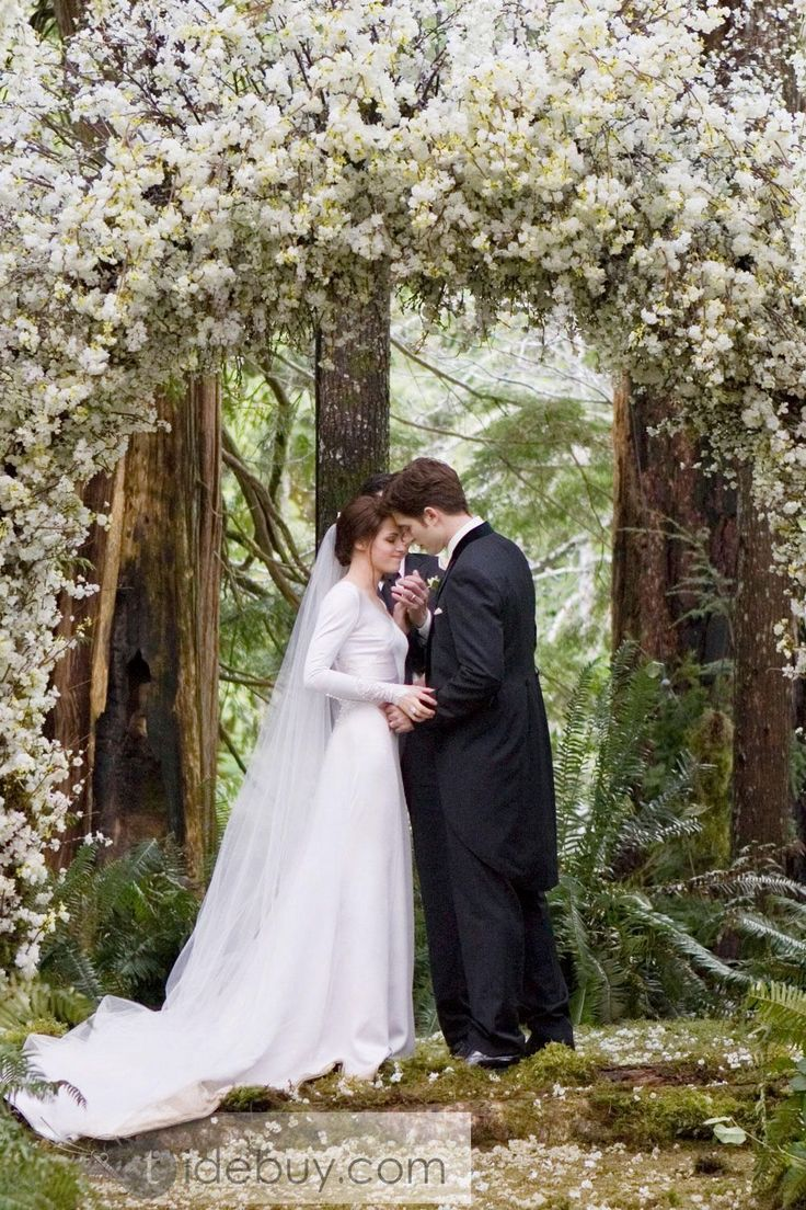 Gorgeous Sheath/Column V-neck Long-Sleeve Wedding Dresses Inspired by Bella in Twilight