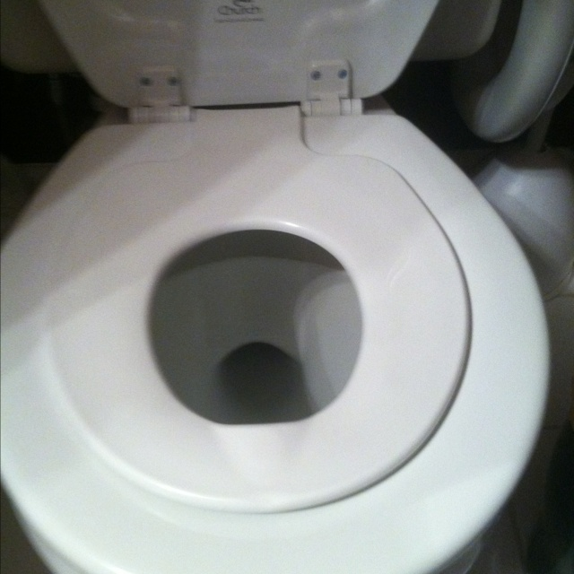 The family toilet seat. An amazing invention!