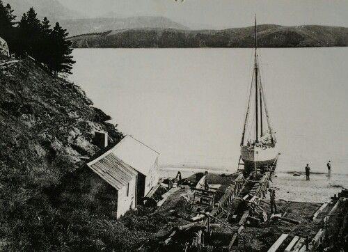 Magazine bay Lyttelton harbour