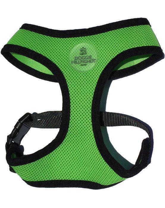 Sport Harness & Lead Set in Lime