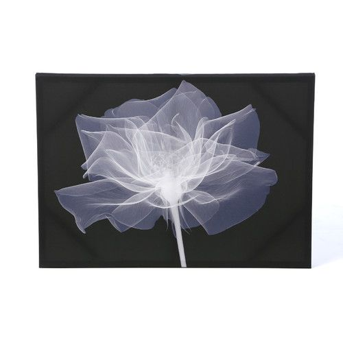 Graham & Brown X-Ray Flower Canvas Art