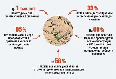 Деградация намиллиарды: вРоссии истощены свыше 60% сельхозугодий