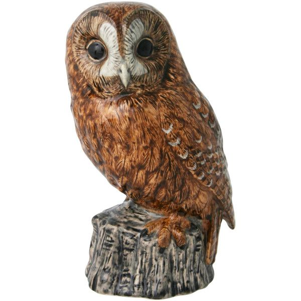 The Owls are Not What They Appear Quail Tawny Owl Money Box ($37) found on Polyvore