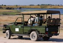 6 Night Victoria Falls, Chobe and Okavango safari - Today you board your flight at the OR Tambo International Airport in Johannesburg for the Victoria Falls Airport, Zimbabwe. On arrival at Vic Falls, you will be met and transferred to the Kingdom Hotel, where you will spend the next (2) nights on a bed & breakfast basis.