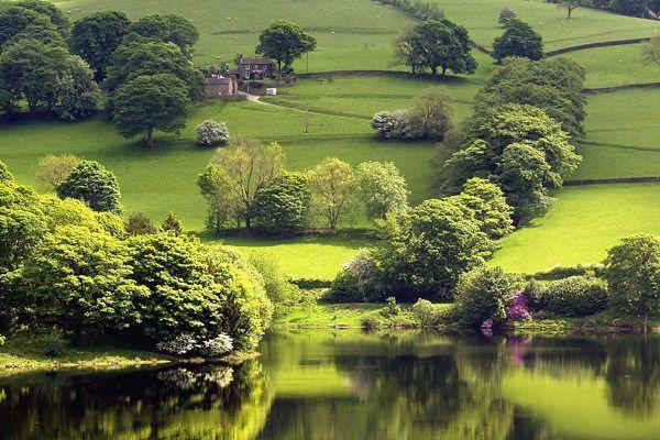 landscape.jpg (600×400)