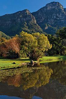 Kirstenbosch National Botanical Gardens in Cape Town, Western Cape