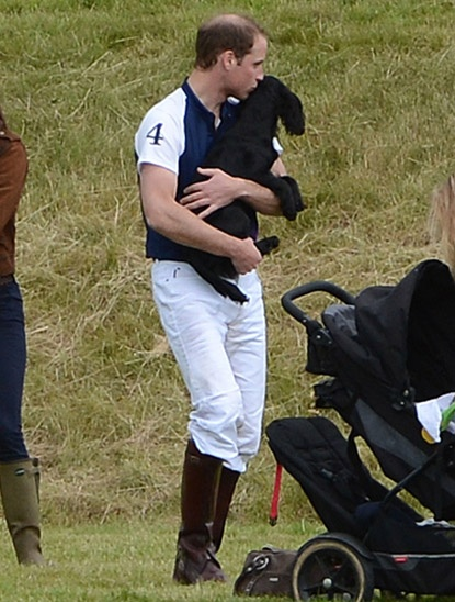 Prince William gives his beloved dog, Lupo, a big kiss. So sweet!