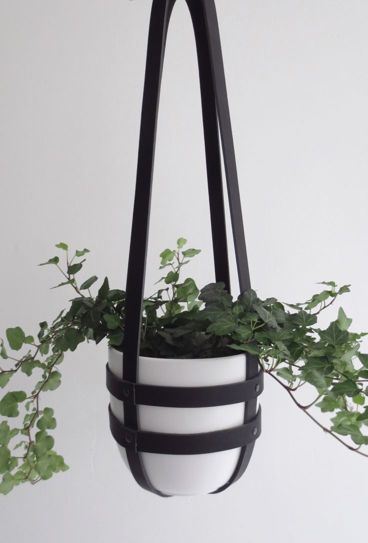 Leather plant hanger More