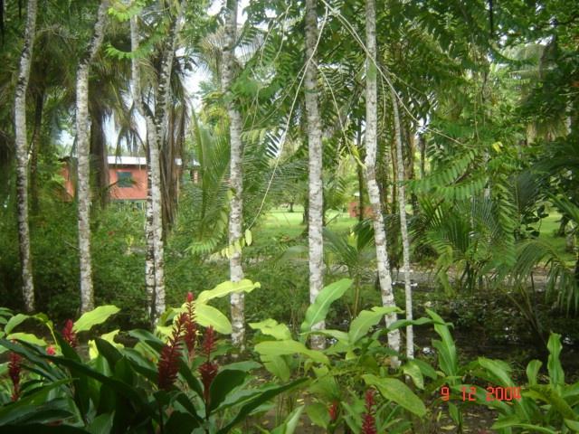 Sloth Sanctuary, Costa Rica