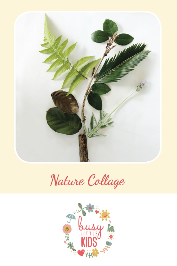 Fun, simple, easy sunny day kids activity - Nature Collage