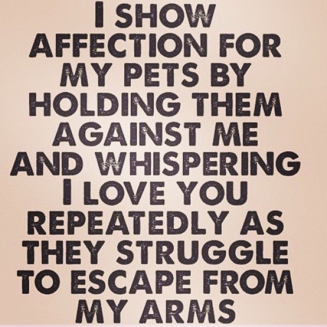 This perfectly describes my relationship with my cats!
