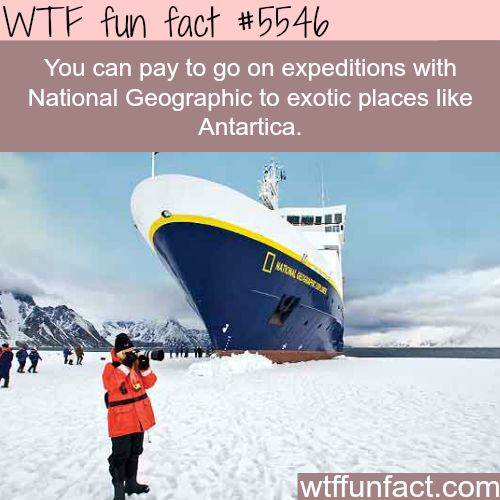 Take my money! Expeditions with National Geographic - WTF fun facts