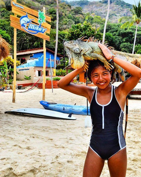 Make a new friend at Mike's Beach Club  Descubre nuevas amistades  #mikesbeachclub #beachclub #beach #playa #restaurant #friends #amigos #iguana #mikes_fishing https://www.instagram.com/p/BF4M-pLxZke/