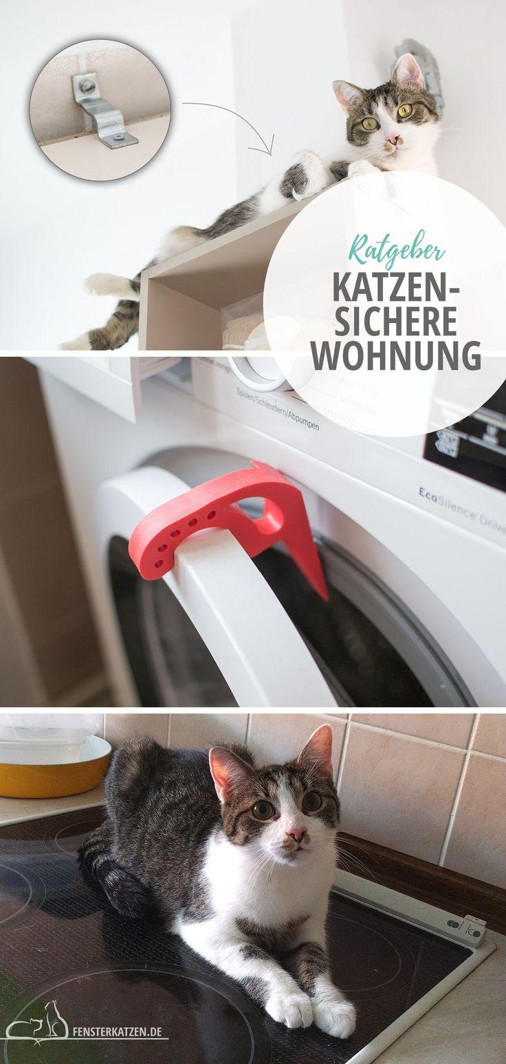 Cat Safe Apartment – Was muss ich beachten? // TEIL 1   – Blog Beiträge Fensterkatzen