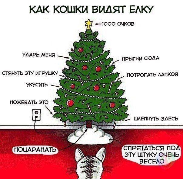 Новый год уже совсем скоро! самое время покупать подарки! http://lifezon.ru/ поможет вам в этом!