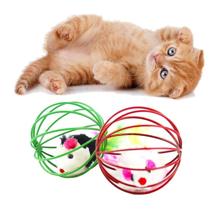Cat Funny Playing Toy - Teal Fake Mouse in Cage Ball