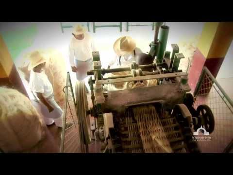 A beautiful virtual tour of a working Mexican hacienda. The Gringo Furniture blog. http://www.gringofurniture.com/blog/77-hacienda-mexican-furniture-inspiration