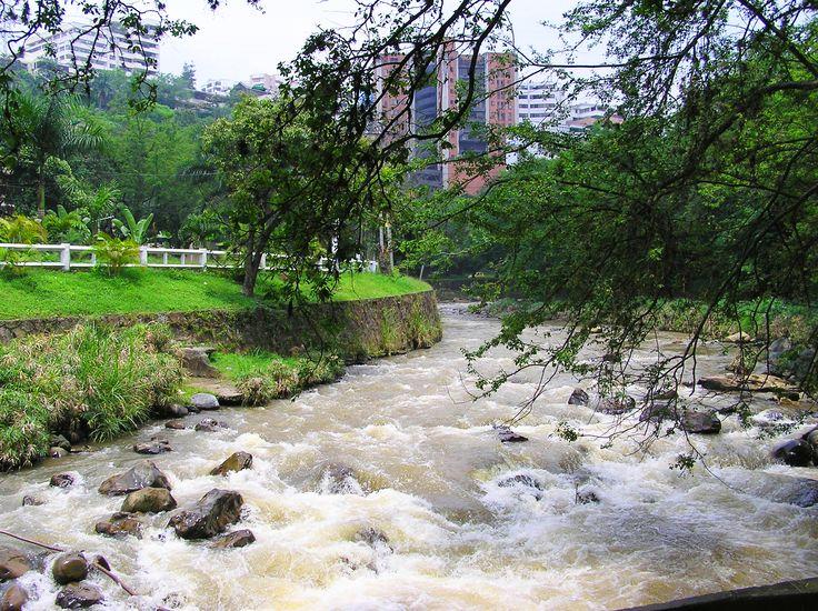 El río Cali es uno de los principales ríos en el municipio colombiano de Cali. Nace en el Alto del Buey en los Farallones de Cali. Su cuenca hidrológica ocupa 11.920 ha del noroccidente del municipio y su cauce recorre 50 km en la dirección oeste-noreste desembocando en el Río Cauca. Entre sus afluentes se destacan los ríos Pichindé, Florida, Aguacatal y Cabuyal.