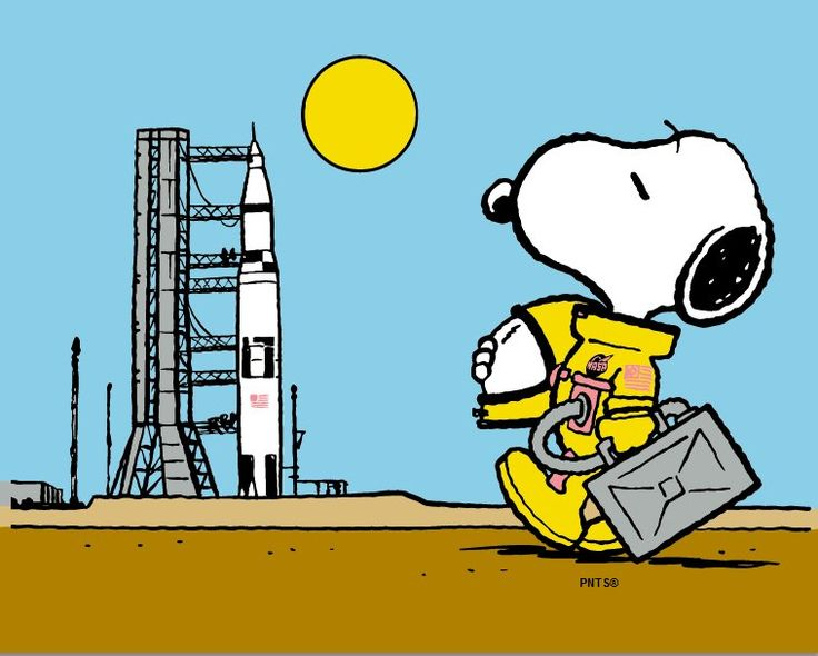 269 best images about Snoopy on Pinterest | Peanuts snoopy ...