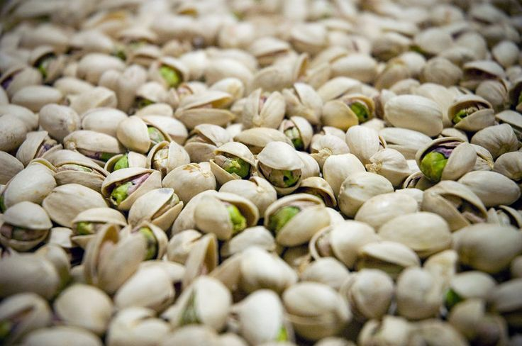 """Oh, Nuts! Why California's Pistachio Trees Are Shooting Blanks. This year, many of the pistachios grown in California's San Joaquin Valley are missing the green, fatty meat that nut lovers crave. Instead, they're empty inside, the result of drought, heat and weather pattern changes that have messed with pistachio tree fertilization."""