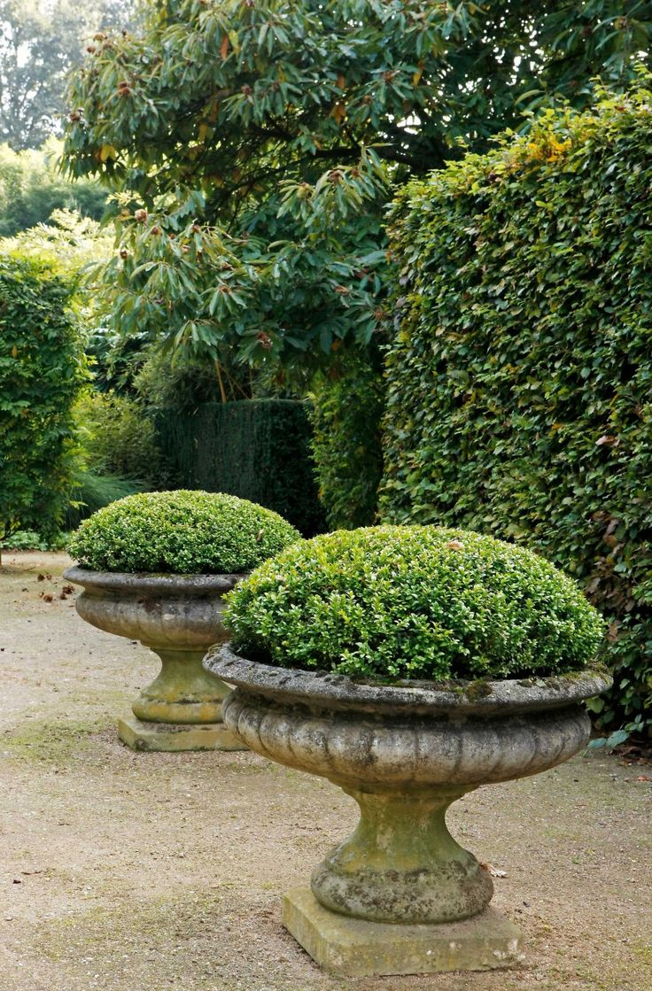 Love these big plant pots!! Outdoor and Garden Decoration