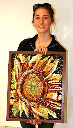 Bean mosaic sunflower