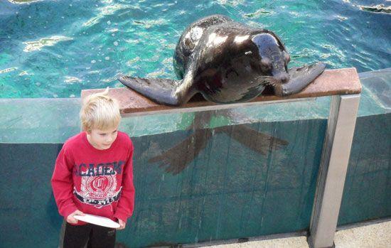 20 Things to Do in Edmonton With Kids #EdmontonWestendOneDirectionContest