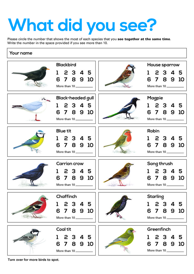 Bird counting sheet. Free resource for Big Schools' Birdwatch. Perfect for children. You can still register for Big Schools' Birdwatch here https://ww2.rspb.org.uk/discoverandenjoynature/discoverandlearn/schoolswatch