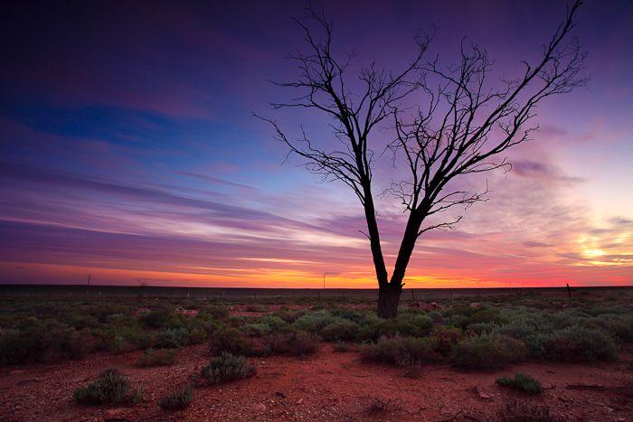 Woomera Wilderness  Woomera, South Australia