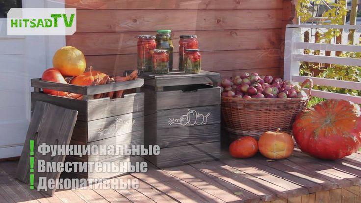 Хранение овощей и фруктов. Ящики для хранения - особенности, какие лучше?