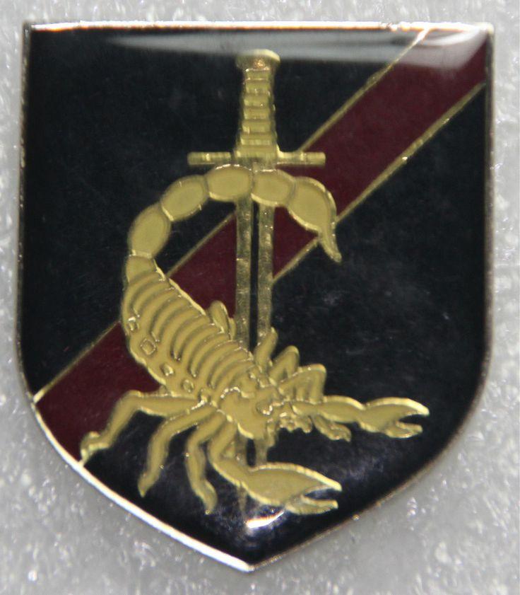 Special Operations Brigade Parachute Element beret badge  Angola Army