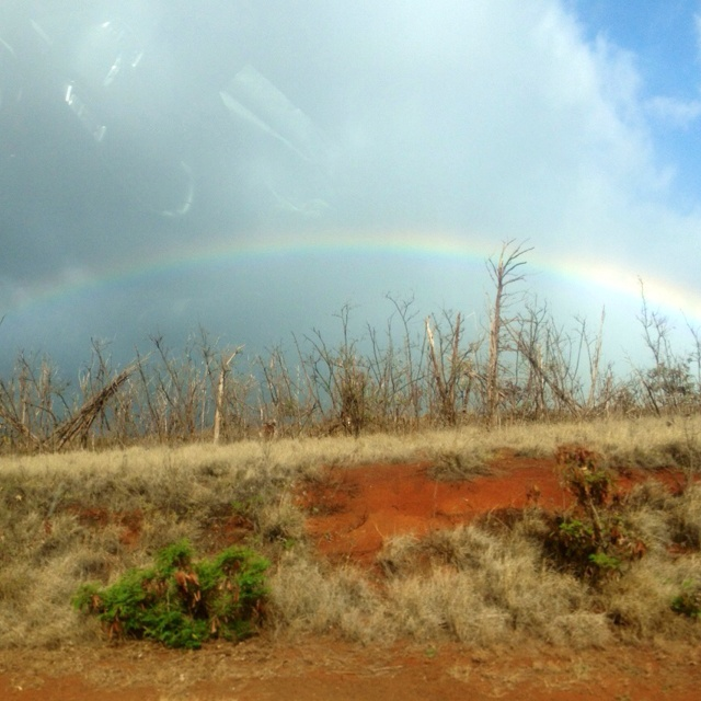 Rainbow in Kaanapali, Maui, Hawaii.