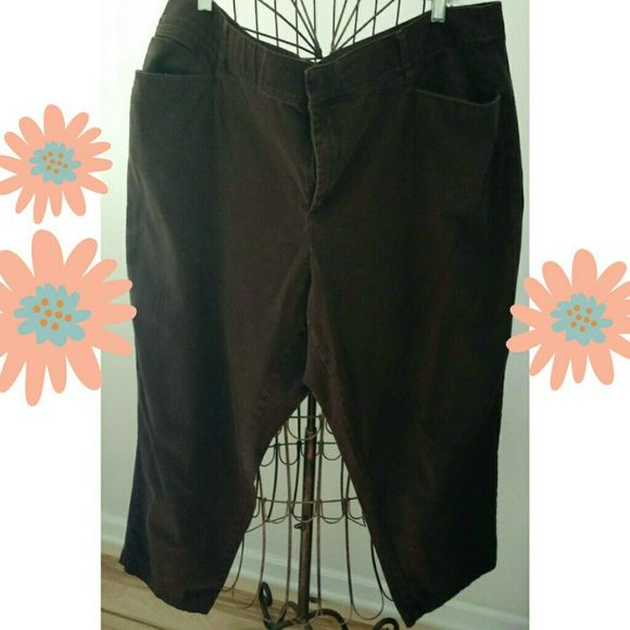 Brown pants Brown pants, comfortable, stretch, comfort waistband. Great condition. Cato Pants
