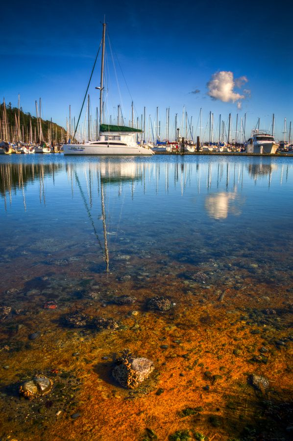 Anacortes washington state fish and chips travel for Washington state fish