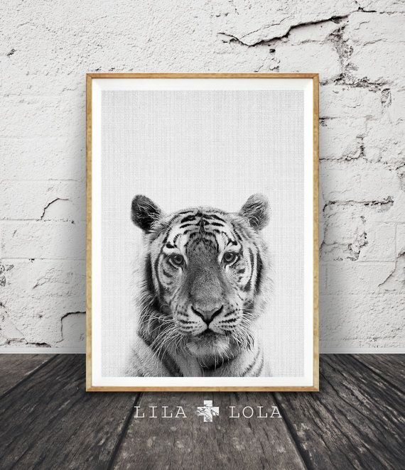 Tiger Print Nursery Animal Wall Art Safari Decor by LILAxLOLA