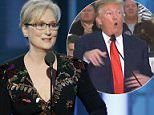 POLL: Should Meryl Streep have brought up politics? I said No. 51% of others agreed with me. What do you think?