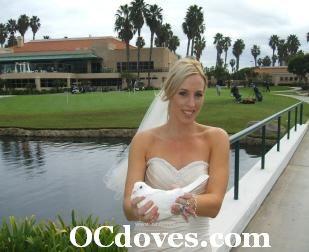 White Dove Wedding Huntington Beach 714 903_6599 www.OCdoves.com #wedding #weddings #PelicanHillGolfCourse #dove #doves #doverelease #whitedoverelease #whitedove #whitedoves #orangecountywhitedoves #OCdoves #OrangeCounty #Golf #release #doveweddings #whitedoveweddings