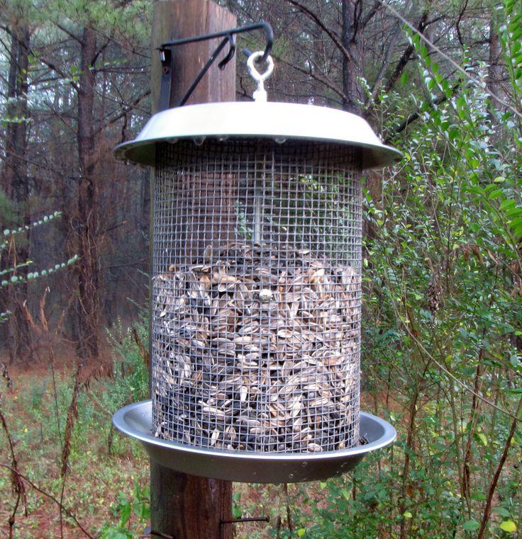 49 best birds and bees images on pinterest birdhouses for Homemade bird feeder plans