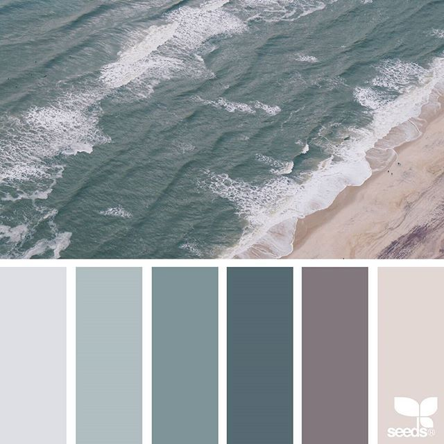 today's inspiration image for { color shore } is by @nathalierollandin ... thank you, Nat, for sharing your breathtaking photo in #SeedsColor !