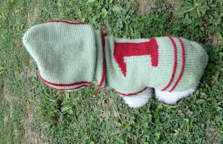 Manteau pour petit chien -N°1- en laine avec capuche Coloris vert Tricoté à la main : Animaux par l-atelier-du-chas