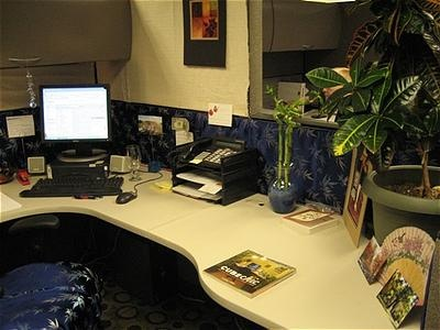 Cubicle Design Ideas simple office cubicle design ideas Cubicle Decorating Idea