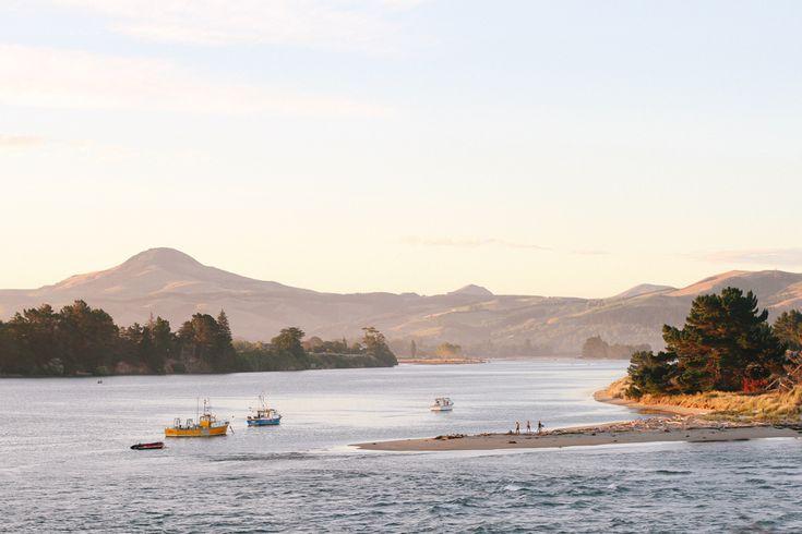 Karitane — Insiders Dunedin