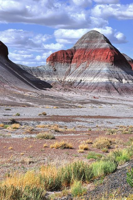"""The Tepees"" at Petrified Forest National Park, AZ"