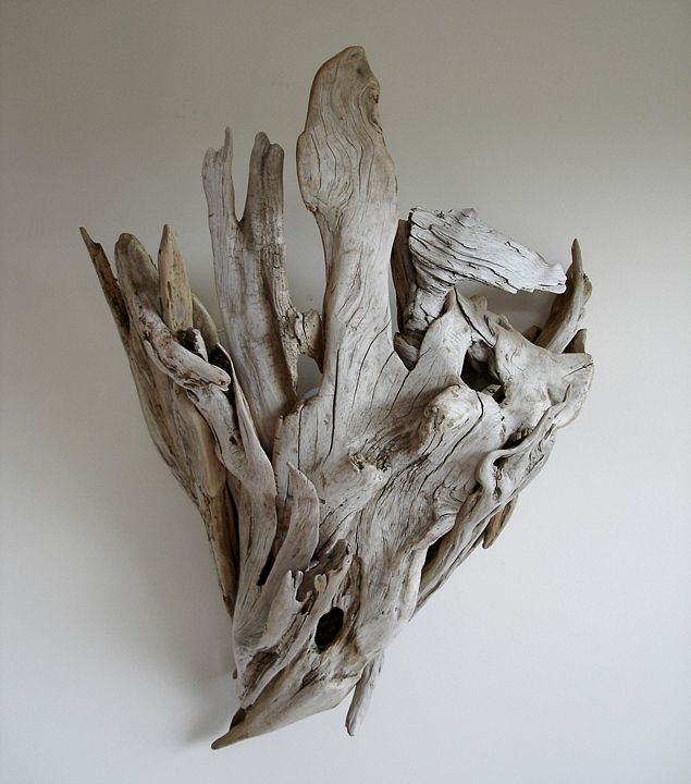 Wall Sconce from Driftwood  by Vincent Richel