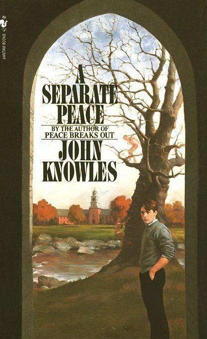 A Separate Peace Essay | Essay