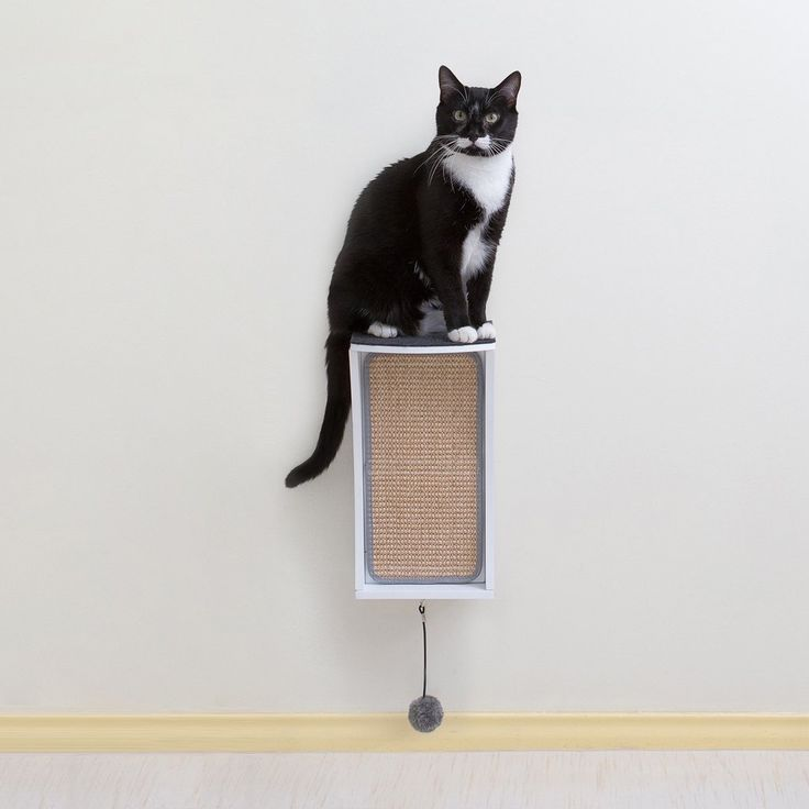 17 best ideas about modern cat furniture on pinterest cat wall shelves cat climber and cat trees - Wall mounted cat climber ...