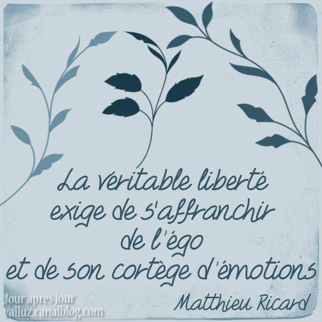 La véritable liberté exige de s'affranchir de l'ego et de son cortège d'émotions. Matthieu Ricard